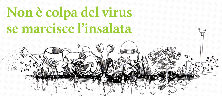 virus-sito-web_cover_724x313px